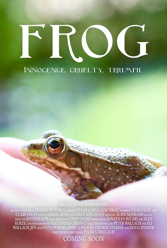frog_movie_poster