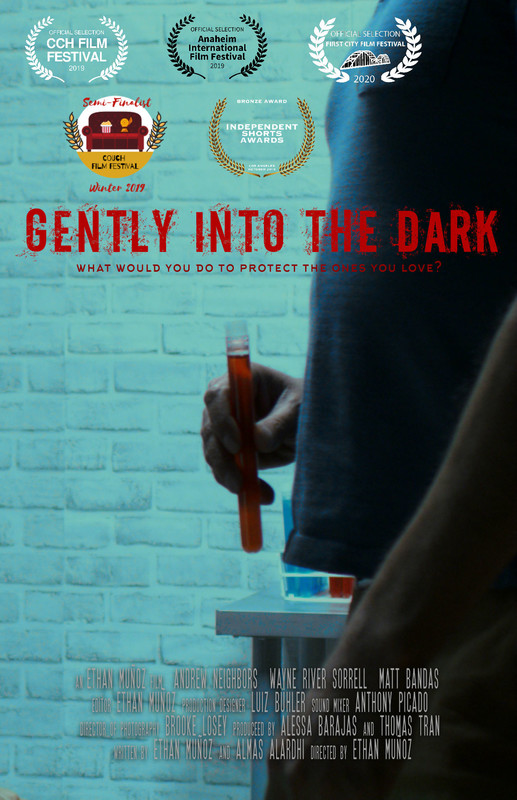 gently_into_the_dark_movie_poster